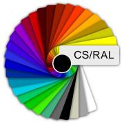покраска в цвета Ral (Cs)